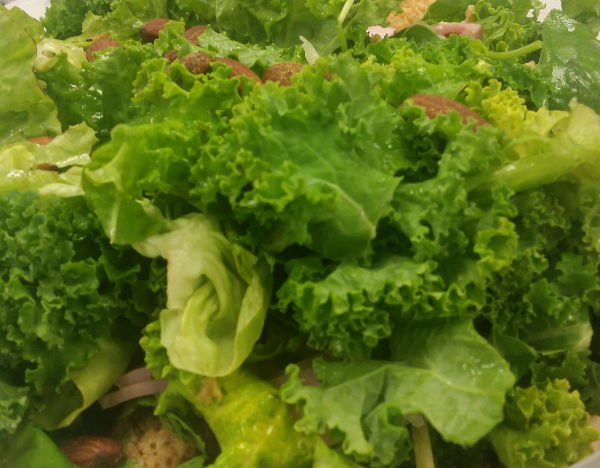 Kale and Coriander s